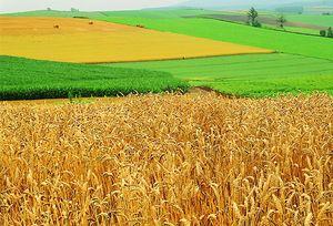 Условия для расторжения договора аренды земельного участка