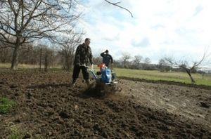 Как можно использовать земли сельхоз назначения?