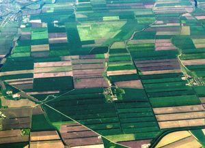 Типовой бланк договора купли-продажи земельного участка и тонкости при составлении его текста