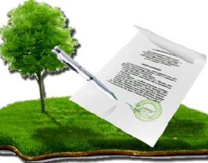 Как правильно оформить земельный участок в собственность по дачной амнистии?