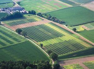 кадастровые группы земельных участков