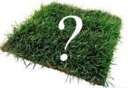 Для чего нужно знать кадастровый номер земельного участка?