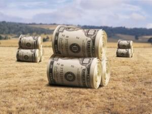 Нецелевое использование земель сельхозназначения