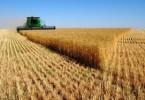 Особенности земель сельхозназначения