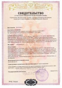 Документ свидетельство о праве собственности