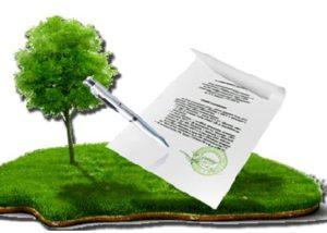 Предварительный договор при продаже земельного участка