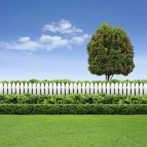 Что будет за самовольное занятие земельного участка?