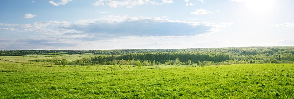 Как рассчитывается арендная плата за земельный участок
