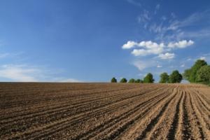 Земельный налог объекты