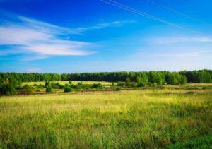 Кредит под залог сельскохозяйственной земли