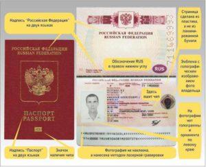 Чем отличается биометрический заграничный паспорт от обычного
