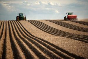 Что такое крестьянско-фермерское хозяйство и личное подсобное хозяйство, отличия