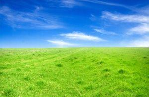 Государственная собственность на землю