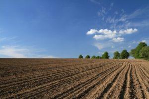 Перевод земель из категории запаса в другую