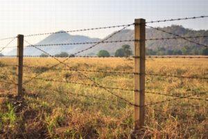 Границы земельных участков, споры