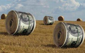Сколько стоит перевод земли в другую категорию