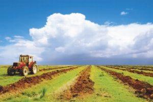 Что такое земельный пай