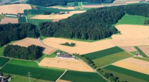 Покупка земли в собственность в 2018 году: пошаговая инструкция