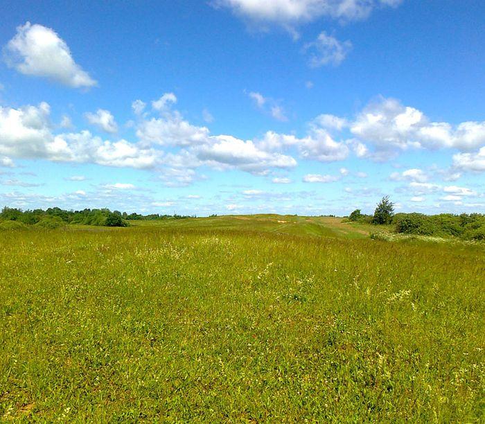 Общие положения приватизации земель без документов
