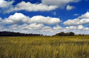 Оформление права собственности на земельный участок при утрате документов
