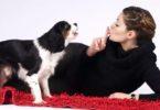 Что делать, если у соседей лает собака: куда жаловаться, как урегулировать конфликт