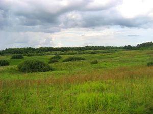 Покупка земли сельскохозяйственного назначения у государства и муниципалитета