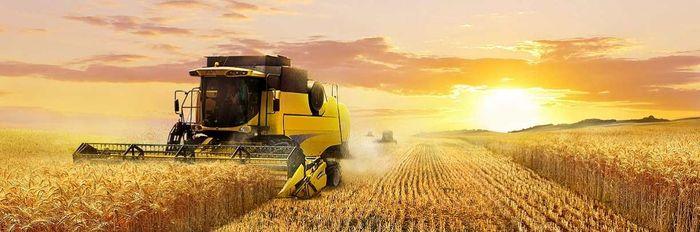 Как купить землю сельскохозяйственного назначения у физических лиц или государства