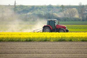 Условия покупки земель сельскохозяйственного назначения