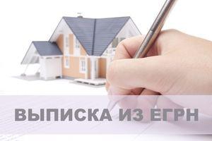 Законы РФ об использовании выписок из ЕГРН