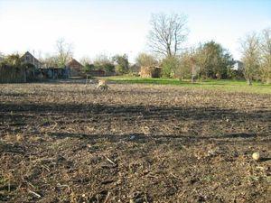 Какие требования нужно соблюдать и документы предоставить при продаже земли