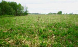 Конфискация земельного участка
